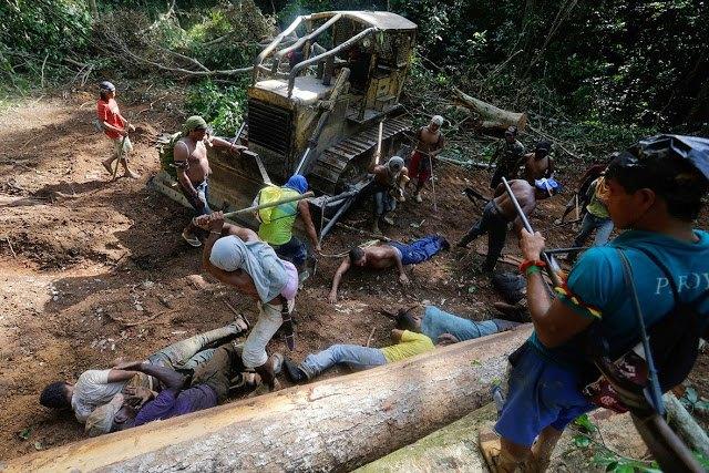 Индейцы Амазонии открыли охоту на браконьеров. Изображение № 2.