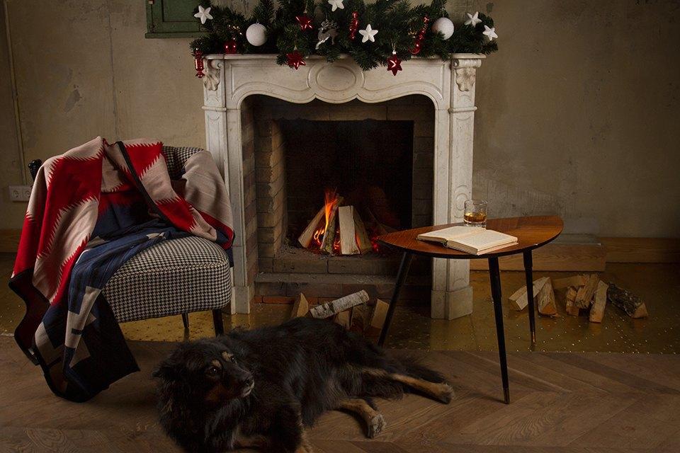 Ревизия пледов: Счастливого тебе Рождества, старый пёс. Изображение № 3.