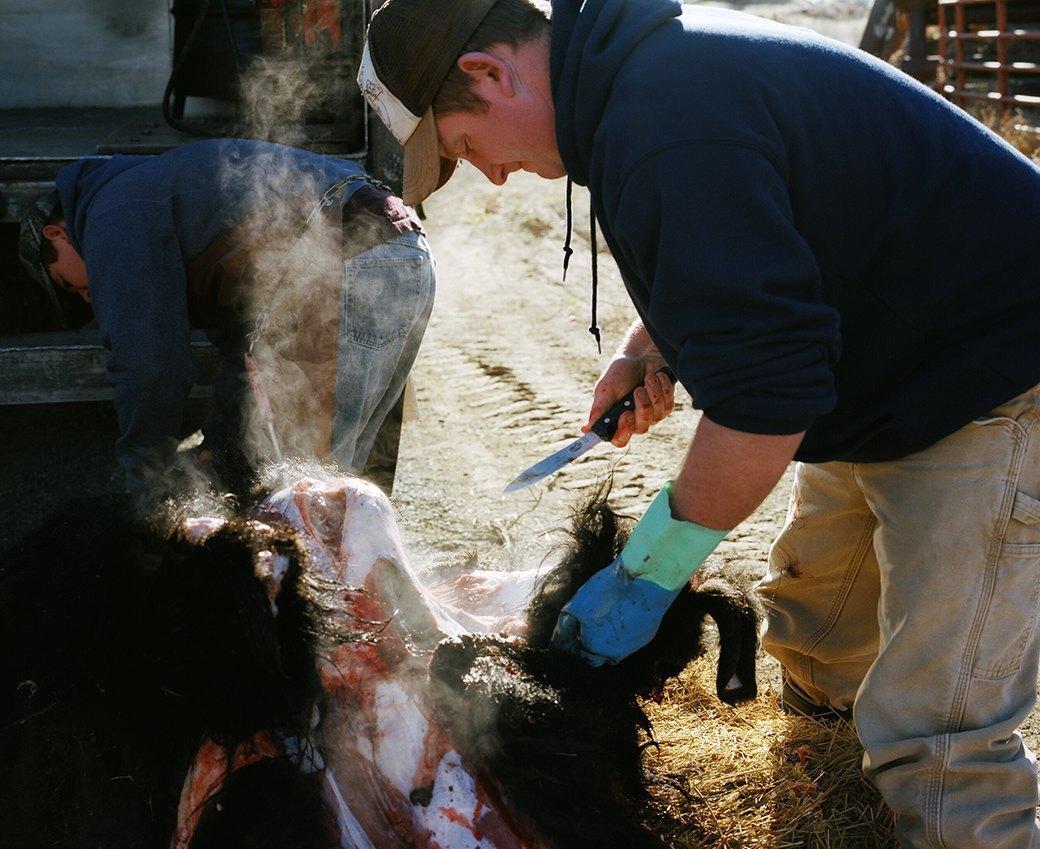 Бытовая жизнь работников бизоньего ранчо в США . Изображение № 17.