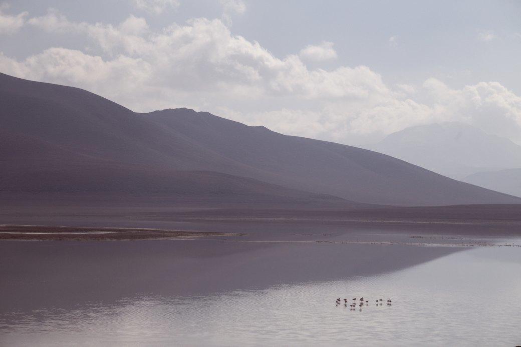 Буря в пустыне: Фоторепортаж с ралли «Дакар-2014» . Изображение № 28.