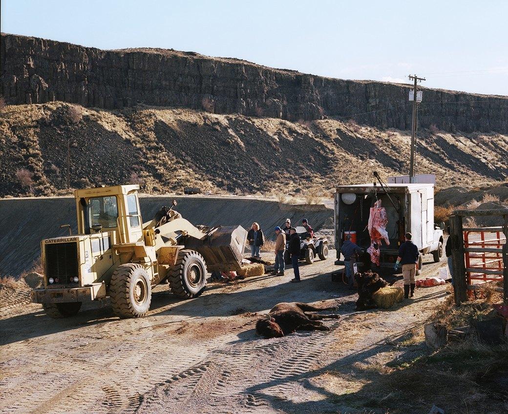 Бытовая жизнь работников бизоньего ранчо в США . Изображение № 19.