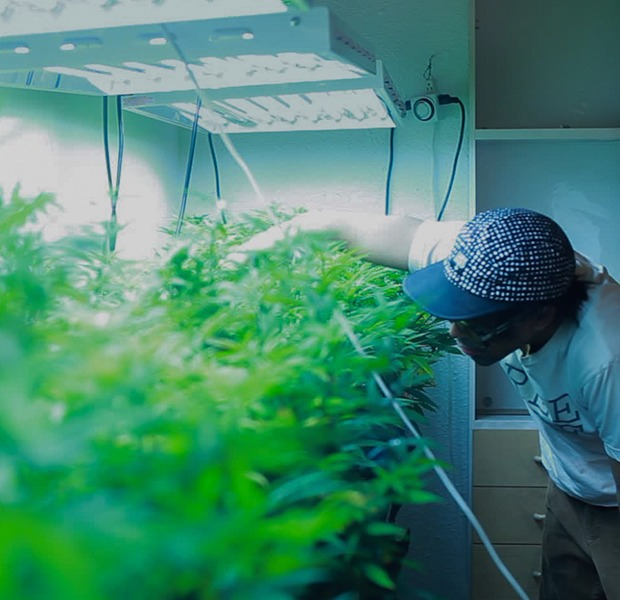 Happiness is running 