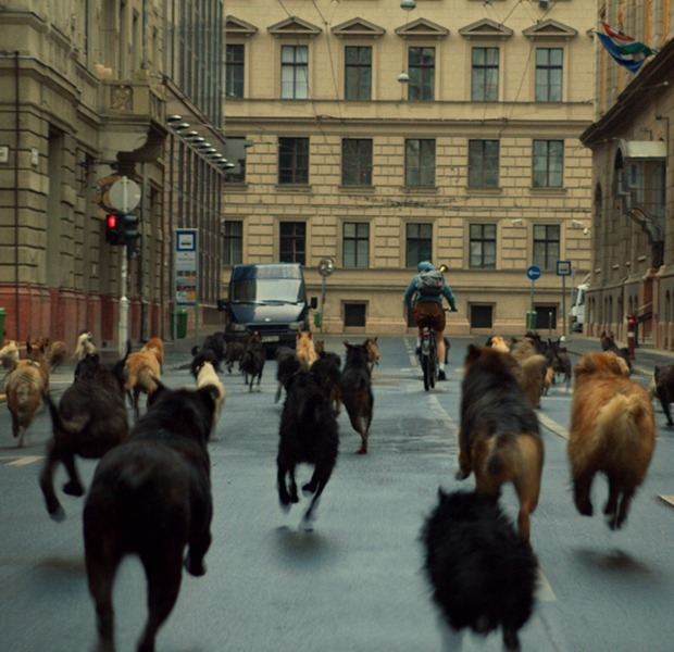 White God: Revenge horror, fairy tales, and a dog revolution in Budapest — Film на Hopes&Fears