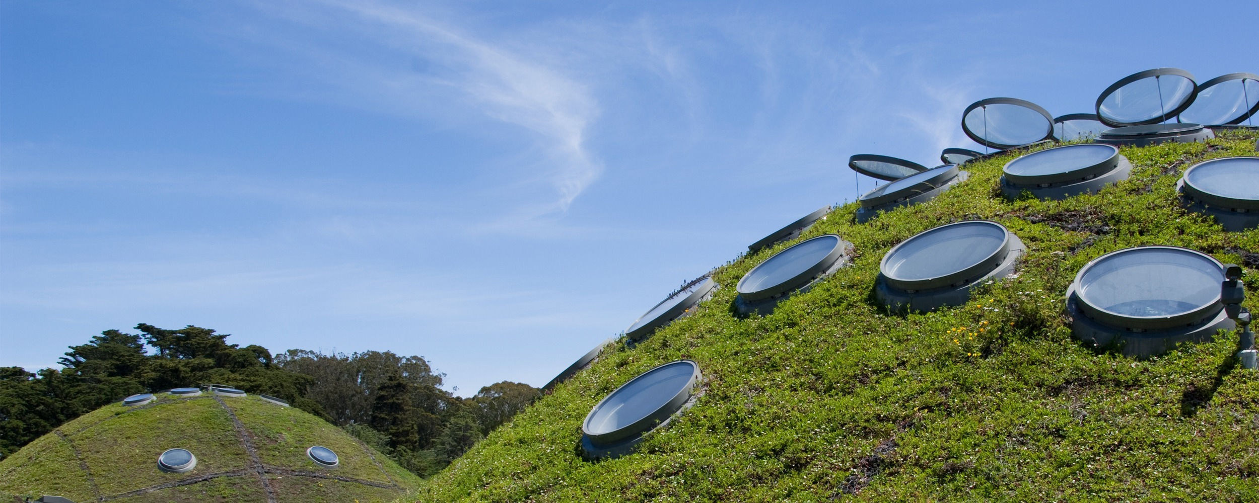 The green roof: how ancient architecture shaped modern sustainable design