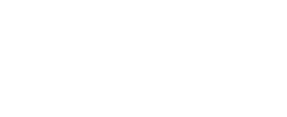 What ever happened to the Tunnel of Love?