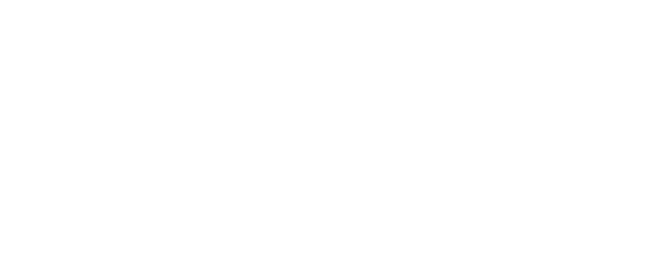 Recapping WikiLeaks: the bold and frivolous moves of a radical organization