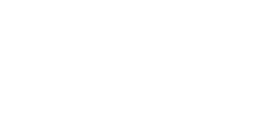 Attention without choice: David Foster Wallace's Adderall novel