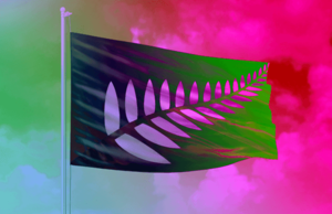 We asked an expert to guide us through New Zealand's 40 new flag designs