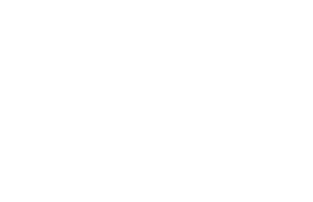 Death and beauty at the Morbid Anatomy Museum's Flea Market
