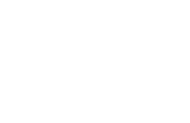 Feeling the internet: how people with visual disabilities surf the web