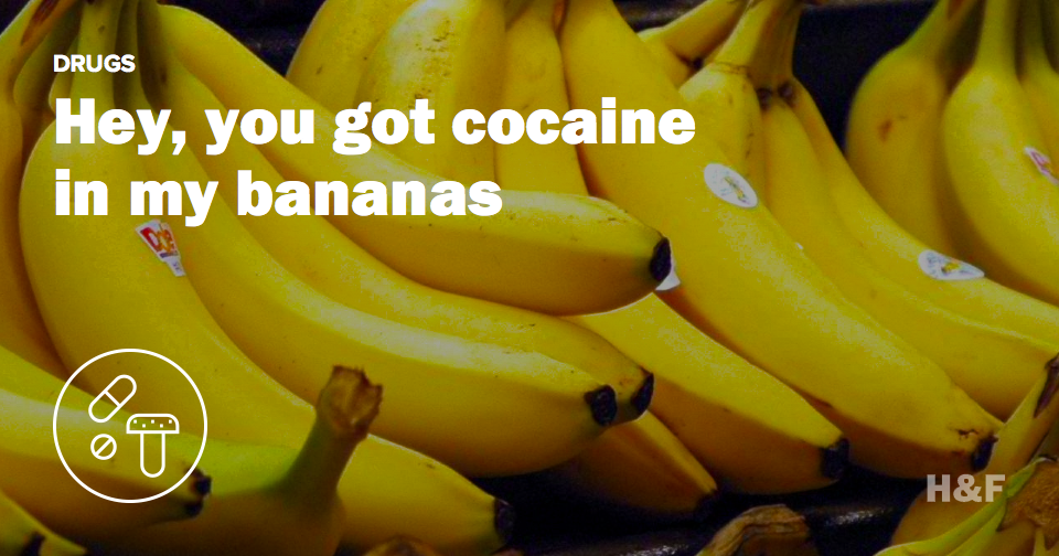 Hey, you got cocaine in my bananas