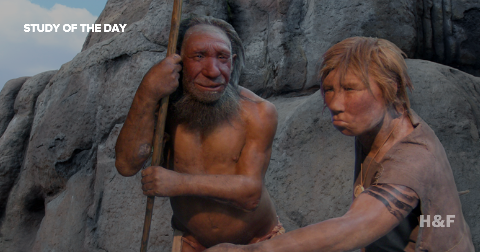 Early humans probably used both sounds and gestures to develop language
