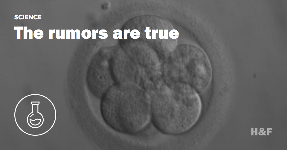 Yes, Chinese scientists did genetically modify human embryos