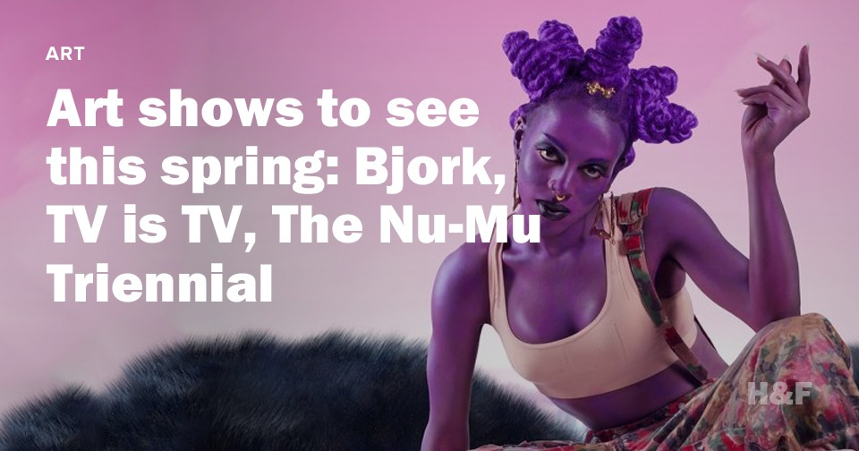 Art shows to see this spring: Bjork, TV is TV, The Nu-Mu Triennial