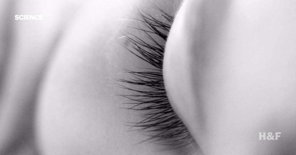 "Eye movements during REM sleep indicate ""cuts"" between dream scenes"