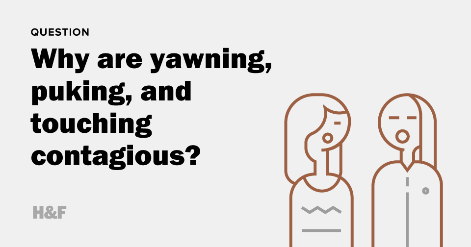 Why are yawning, puking, and touching contagious?