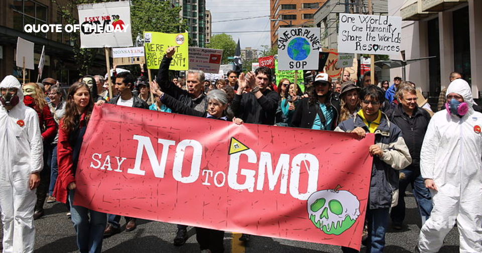 "New article argues anti-GMO movement ""is a sham"""