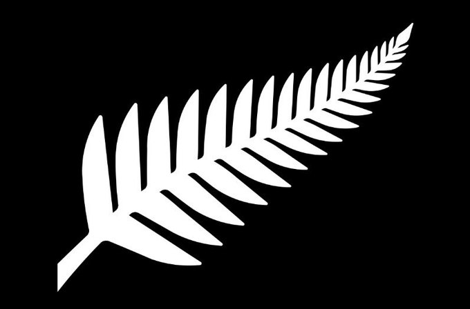 Silver Fern (Black & White), Kyle Lockwood. Image: New Zealand Government. Image 3.