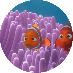 nemo single parents Support for every single parent  tezbrookscom support for every single parent  finding nemo is a 2003 computer-animated adventure film produced by pixar and .