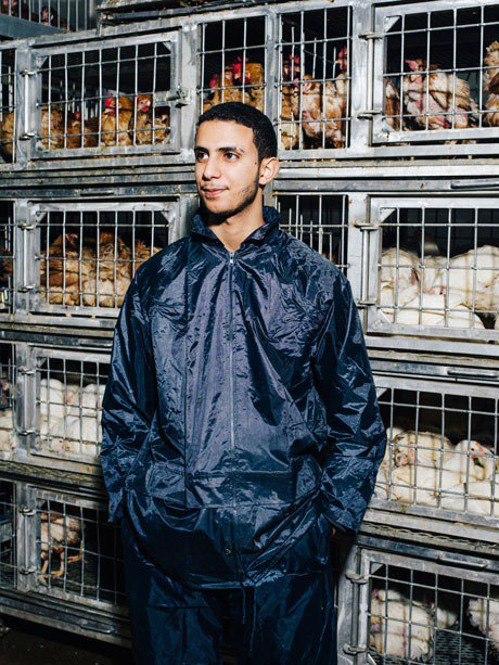 The messy business of NYC's live poultry industry. Image 11.