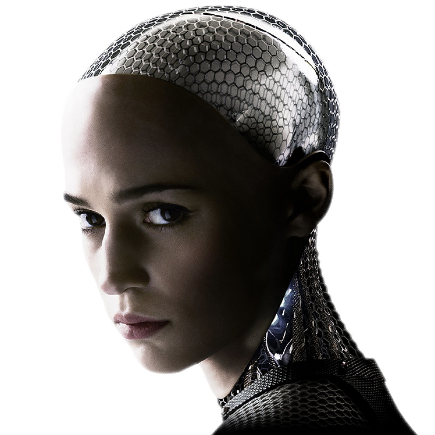 Artificial Sexuality: a roundtable discussion on screwing robots. Image 5.