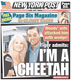 Why do tabloid headlines use so many puns?. Image 12.
