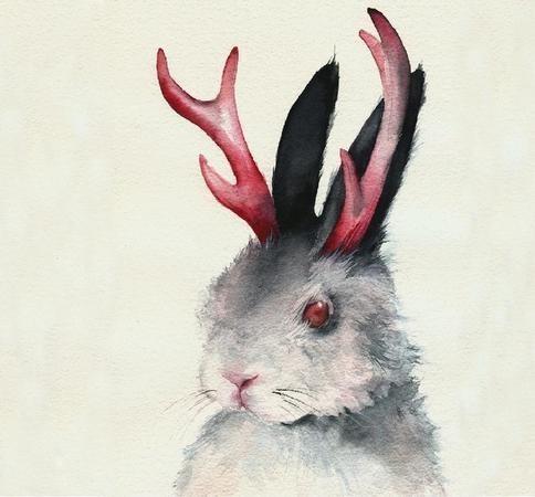 Amber Alexander - животные, сияющие акварелью — Иллюстрация на Look At Me