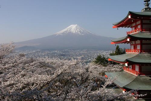 Противопоказаний в отношении поездок в Японию НЕТ!