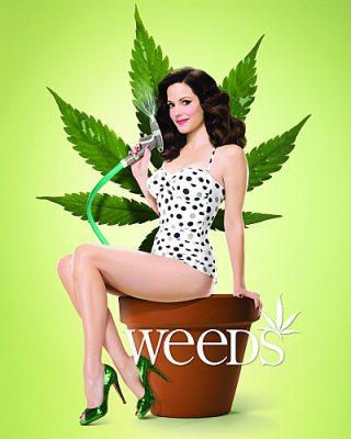 Weeds — Новости на Look At Me