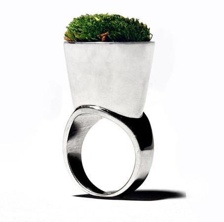 Живые кольца — Мода на Look At Me