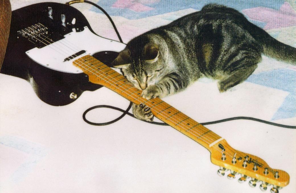 Теория струн:  Почему рок еще жив и скоро снова победит — Другое на Look At Me