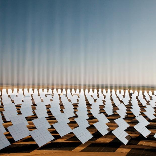 Как выглядит будущее: сотни гектаров солнечных ферм