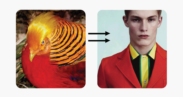 Bright feathers, nature & PRADA — Мода на Look At Me