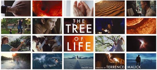 Добро в деталях: «Древо жизни» — Другое на Look At Me