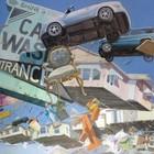 Летающие беспорядки на картинах Адама Цвияновича