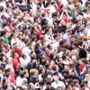 Коллективный разум: Что такое краудсорсинг?