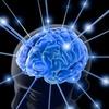 Суперкомпьютер смоделировал секундную деятельность мозга человека