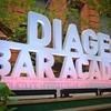 Победители Diageo Bar Academy 2012