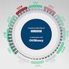 CNN опубликовали музыкальную инфографику данных фондового рынка 2013