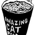 Amazingcatfood