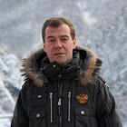 Медведевcasts