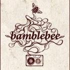 Дебютный клип группы Bamblebee!!!