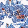 Визуальные лабиринты Camille Rosa