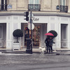 PARIS в декабре