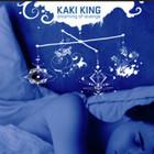Группа с благозвучным названием Kaki King