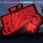 Брэндон Флауэрс рассказал о своем сольном альбоме