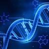 Художница создала набор для борьбы с ДНК-слежкой