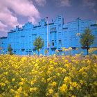 Голубой дом в Голландии!