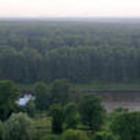 Неужели нам удалось спасти Химкинский лес?