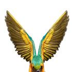Божественные птицы Andrew Zuckerman